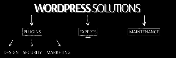 Picture of a BAH blog graphic of a WordPress solutions chart.